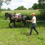 Horsemanship Academy Ines Rothfuß