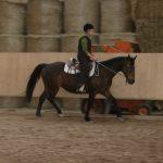 Horsemanship Reitersitz