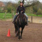 Horsemanship Academy Reiten