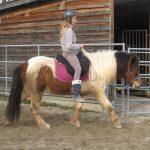 Horsemanship Reiten Kind auf Isländer
