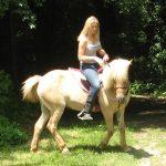 Horsemanship-Academy Isländer