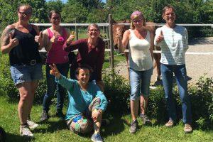 Horsemanship Academy Kurs