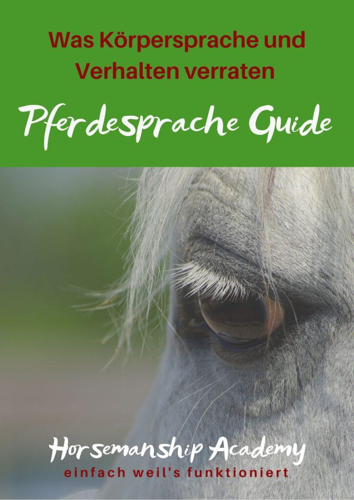 Pferdesprache Guide - Was Körpersprache und Verhalten verraten